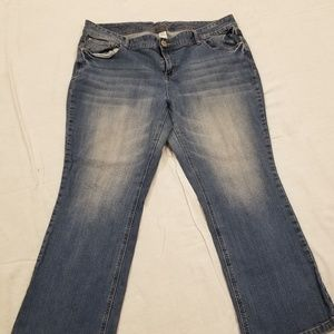 Maurices 20 Short Bootcut